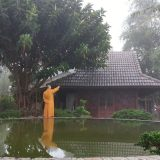 monk at linh quy